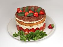 Торт Фризье